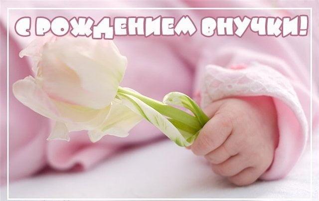 krasivie-otkritki-pozdravleniya-babushke-s-vnuchkoj foto 11