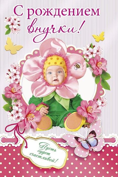 Поздравительные открытки с рождением внучки бабушке, днем