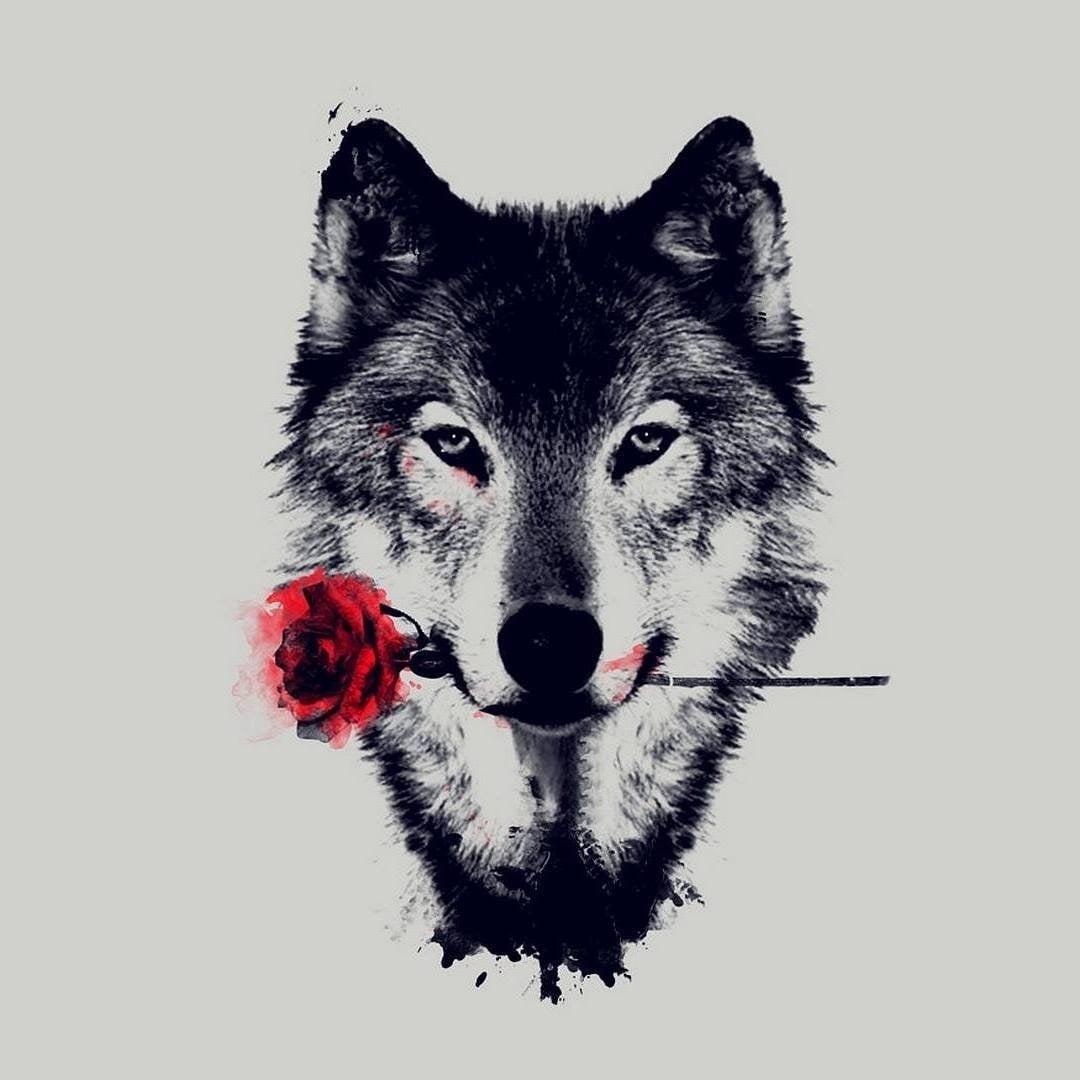 одежды крутой волк в картинках связать сумку