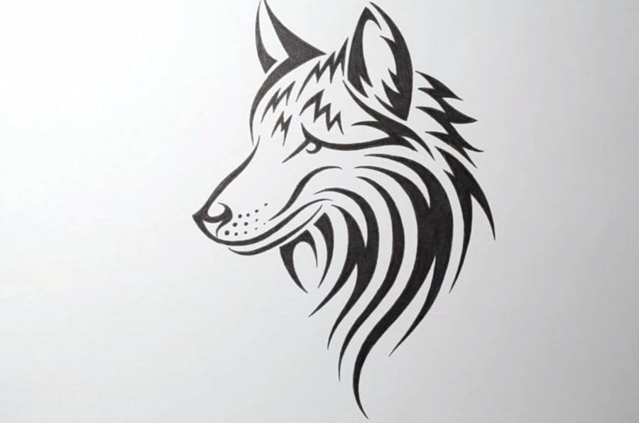Парень, крутые картинки карандашом волки