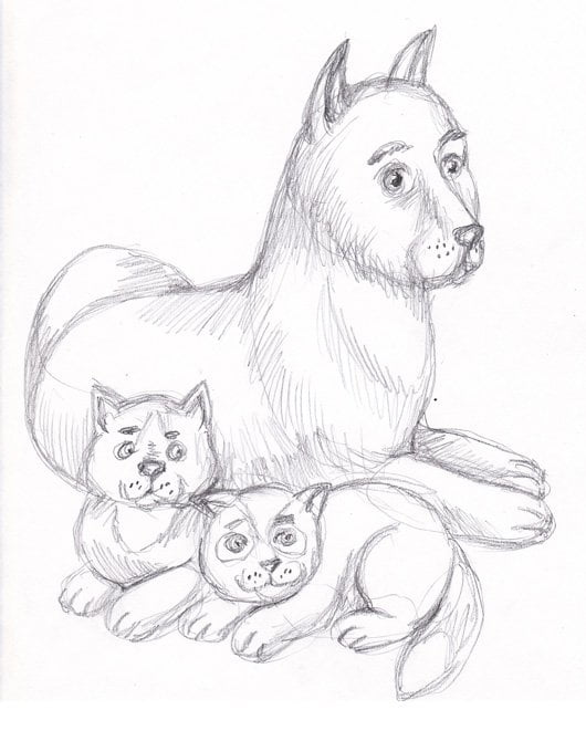 Картинки собаки и кота для срисовки