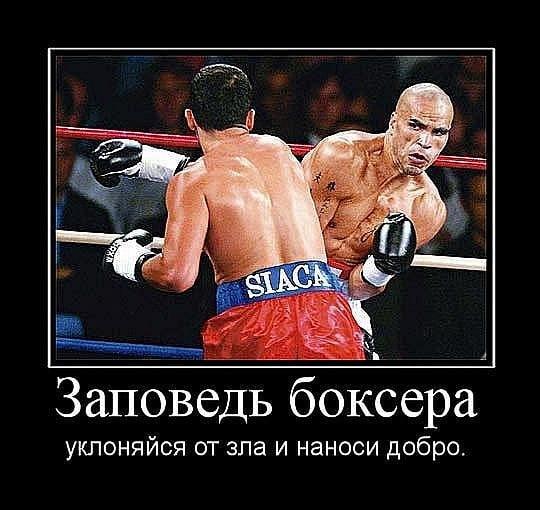 демотиваторы для боксеров коллекция новогодних