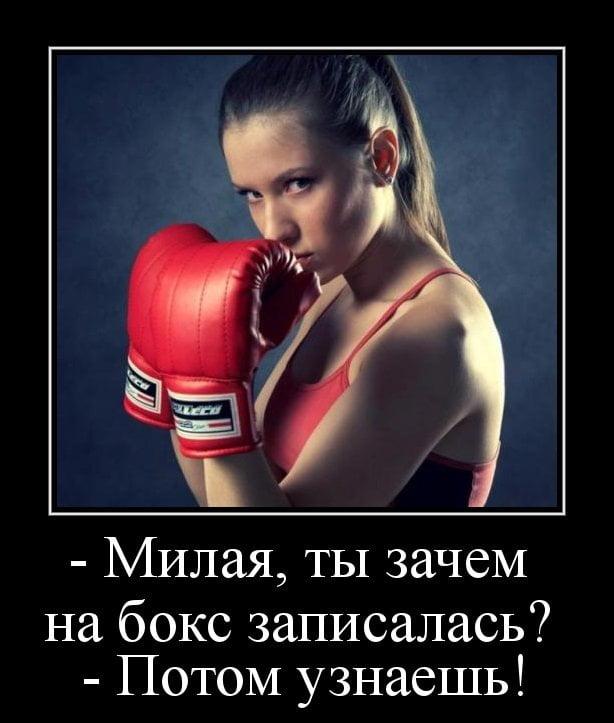 Провести, картинки бокс прикольные