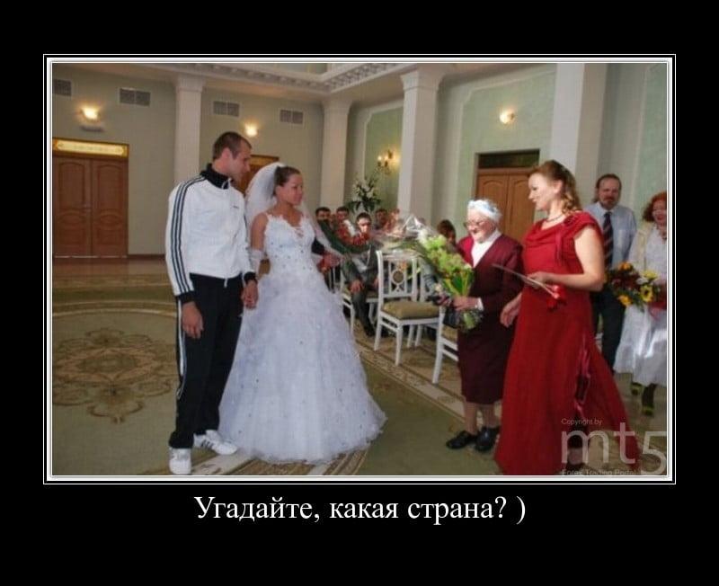 Прикол про свадьбу в картинках, днем