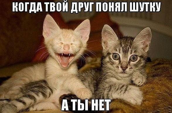 Я имею право привлечь к ответственности любого, кто нарушил закон, даже Коломойского и Ахметова, - Рябошапка - Цензор.НЕТ 5833