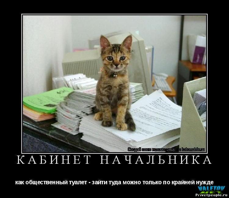 ему приколы к приходу нового начальника фото советское