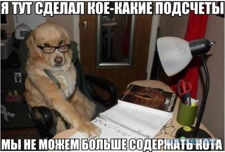 Бухгалтерия прикольные декларация 3 ндфл за учебу скачать бесплатно