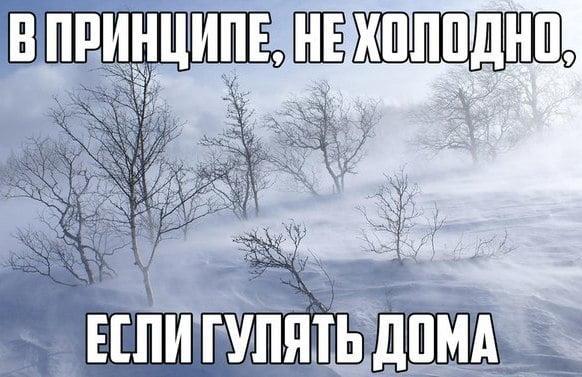Картинки по запросу холодно смешные картинки