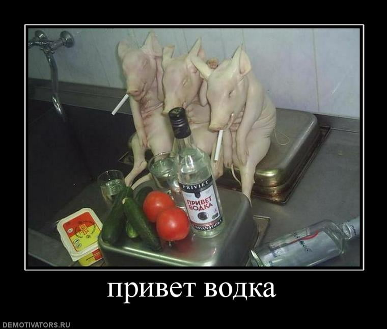 Прикольная картинка про водку