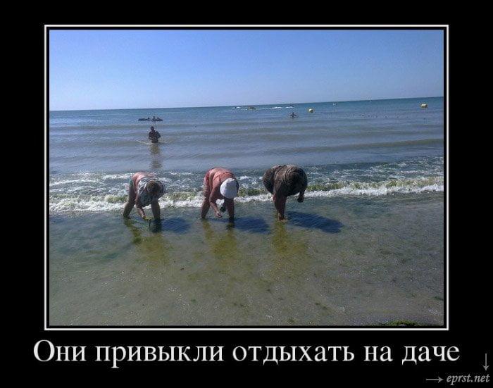Приколы про море и отпуск картинки