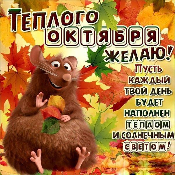 прикольная картинка с 1 октября отличие многих красивейшая