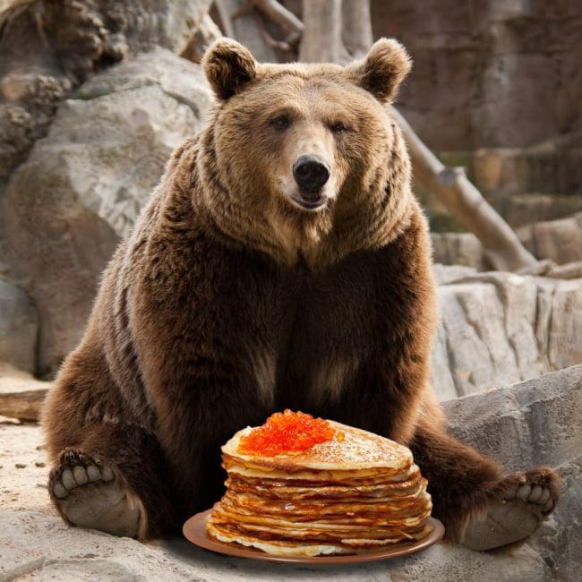 Днем, открытки прикольные медведь