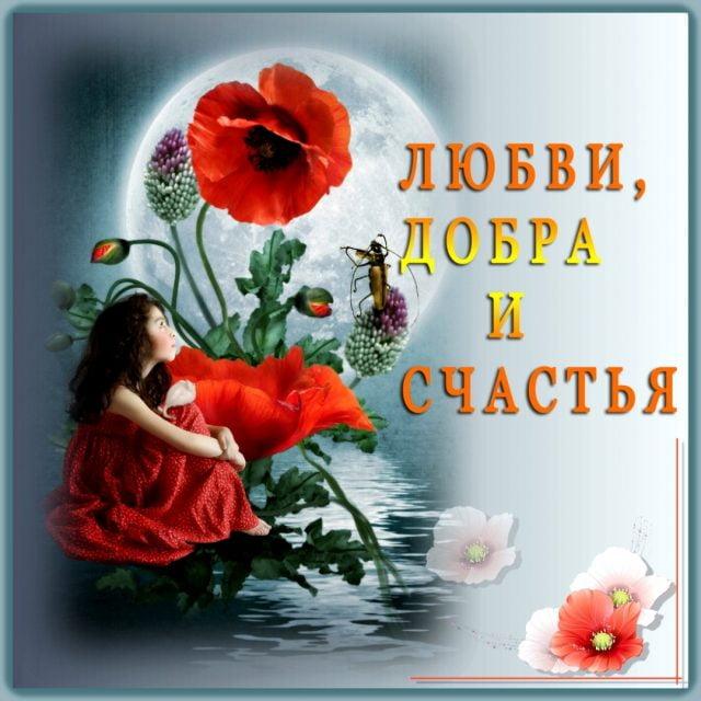 Картинки пожелание добра и счастья мужчинам