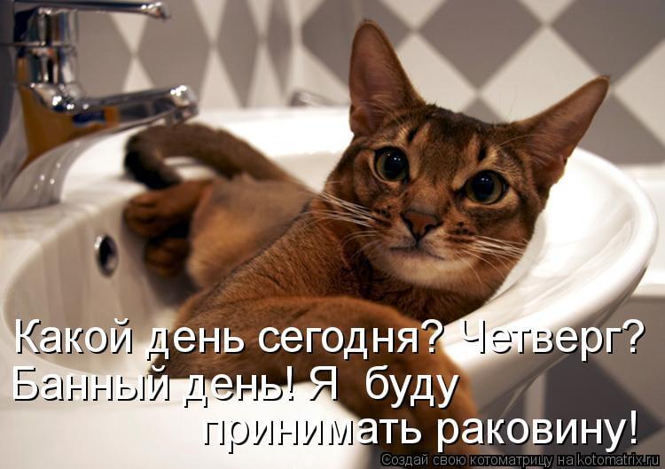 Банные принадлежности ручной работы. Ярмарка Мастеров - ручная ... | 529x750