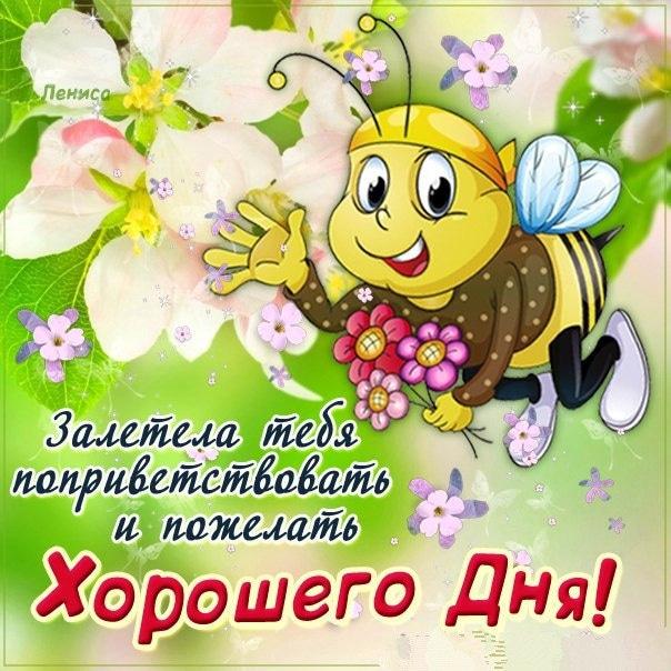 Картинки с пожеланиями хорошего дня милому