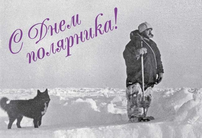 Полярник открытка, поздравления картинки днем