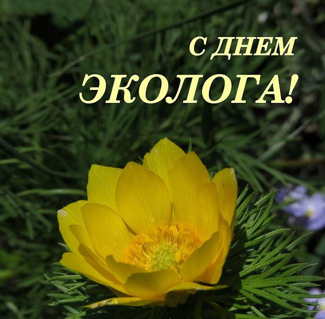 Поздравления к дню экологии