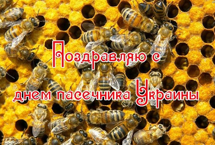 Днем, открытка пчеловода