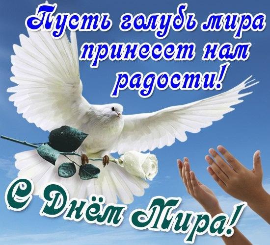День мира картинки поздравления