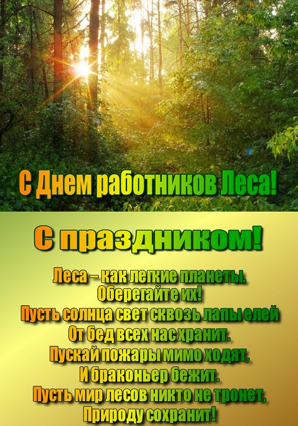 pozdravlenie-s-dnem-lesa-otkritka foto 6