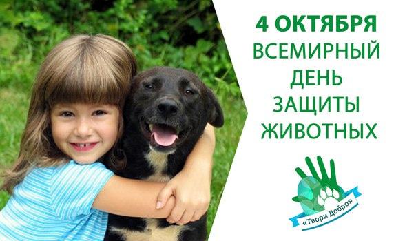 Картинки к дню защиты животных