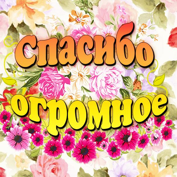 otkritki-spasibo-bolshoe-za-pozdravlenie foto 18