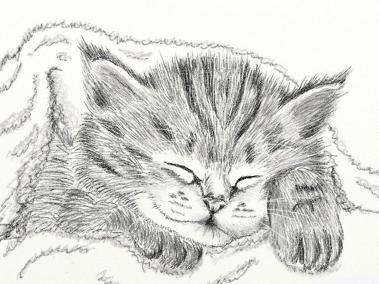 шаров котята картинки рисовать карандашом маникюру коротких ногтях