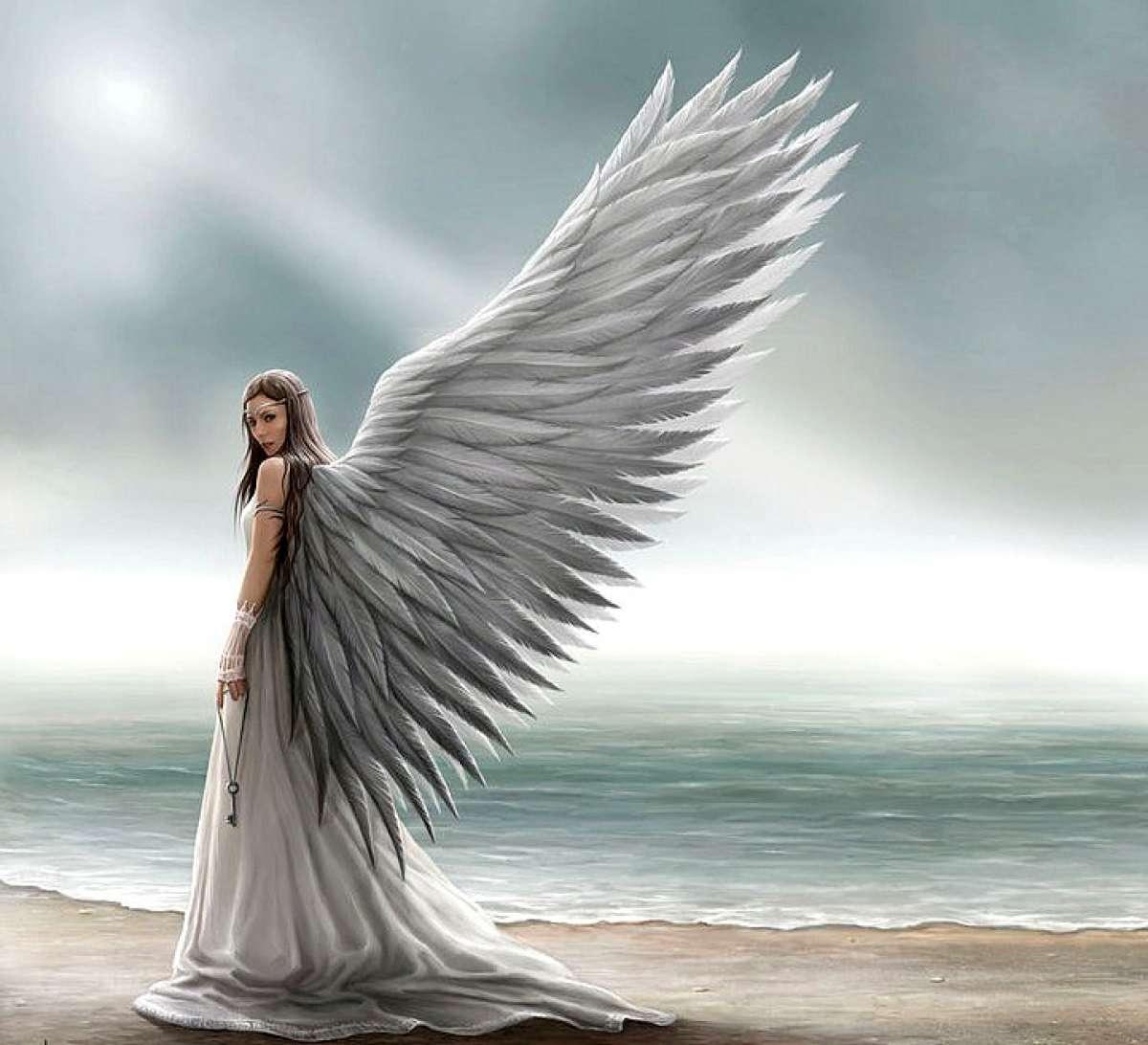 Фото ангела любви