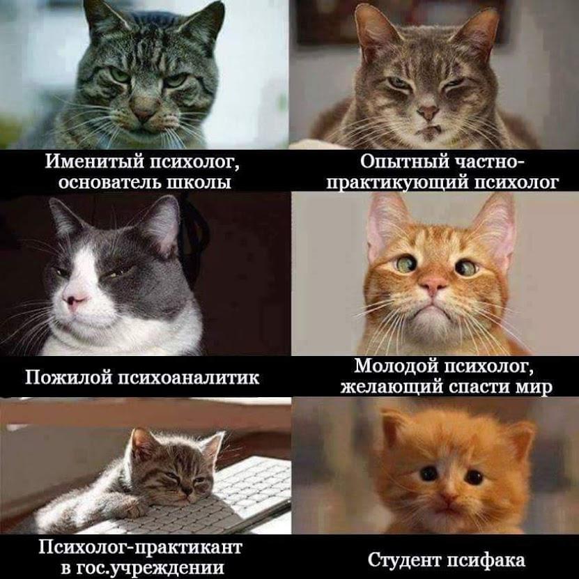 Поздравление с днем россии открытки прикольные