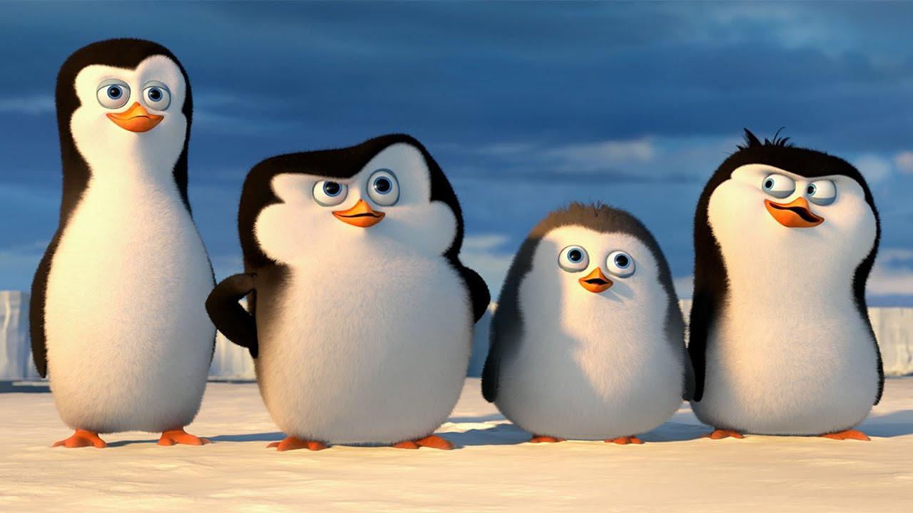 Картинку любимой пингвиненок