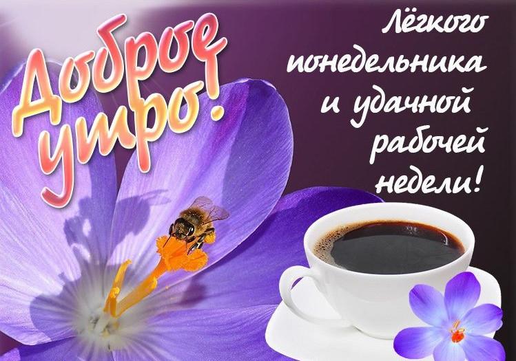 Пожелание доброго утра в понедельник картинки, поздравлениями день