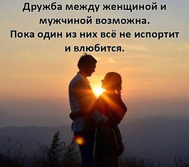 картинка про дружбу после любви это