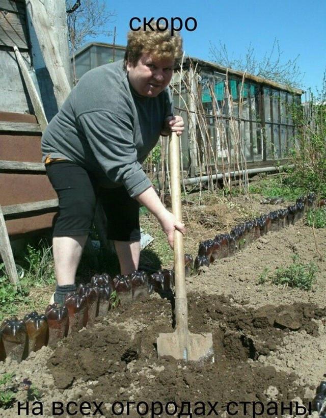скоро огород смешные