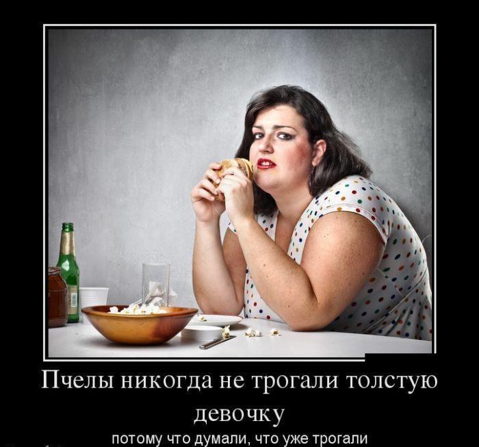 Девушки, смешные картинки про толстую женщину