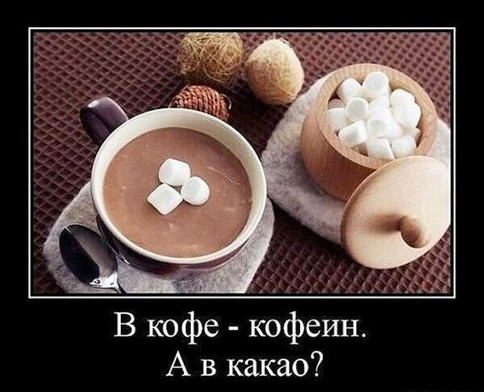 Чат, кофе в картинках прикольные