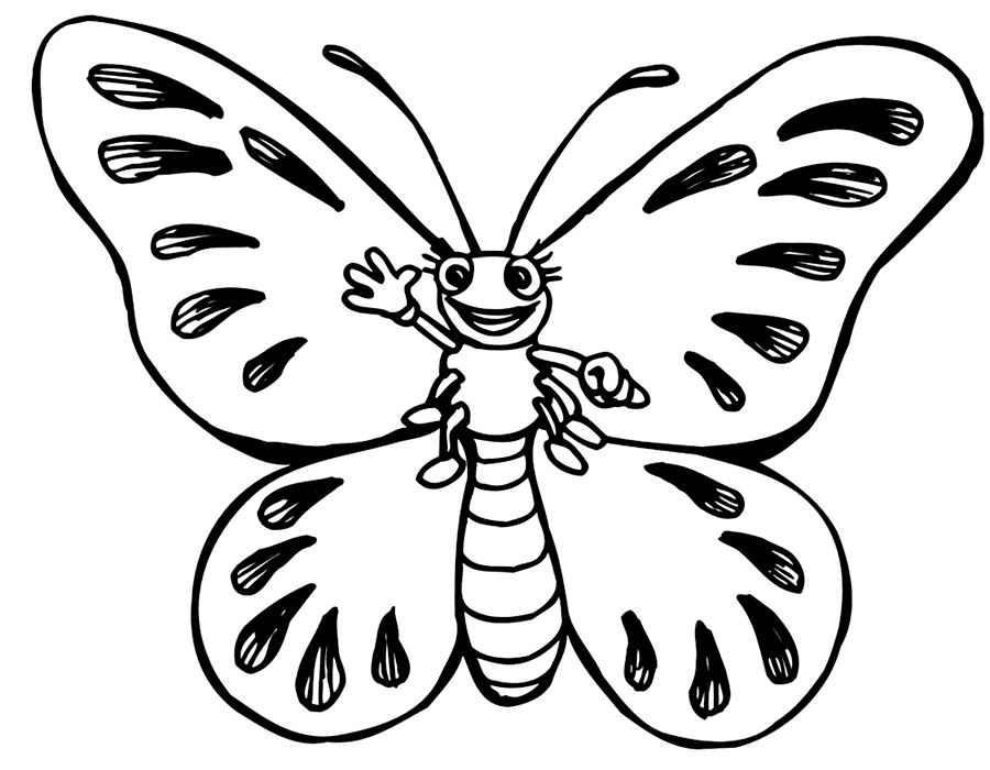 Картинки раскрасить бабочку