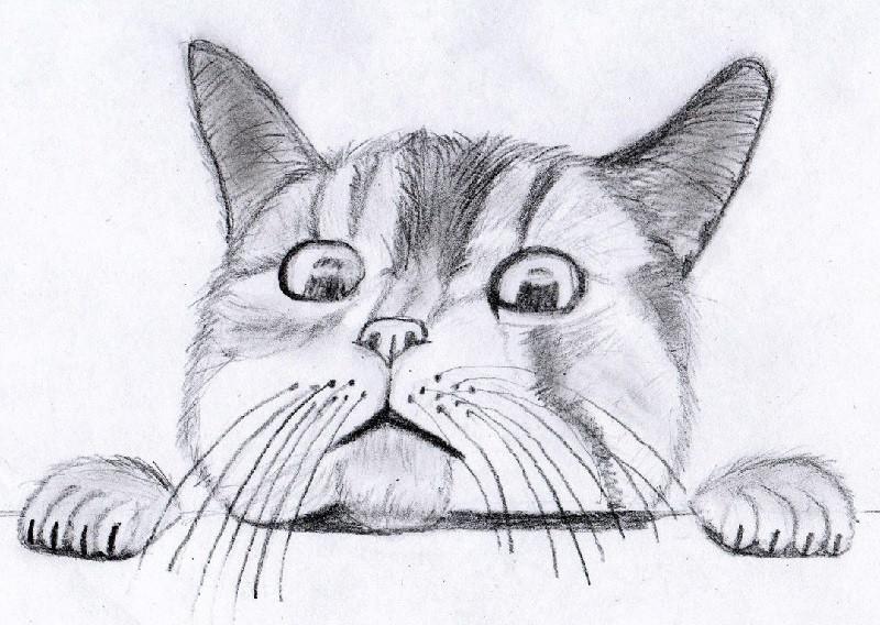 Картинки про работу срисовки