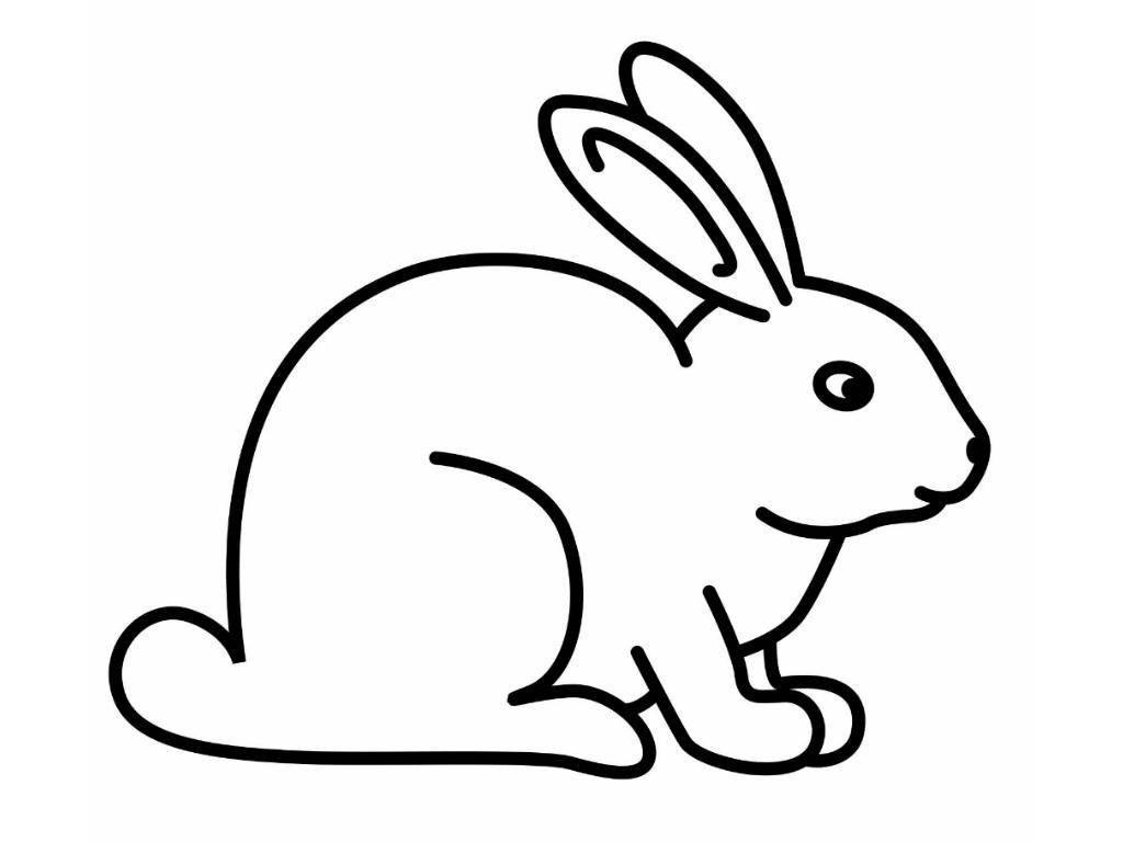 Картинка черно-белая заяц для детей