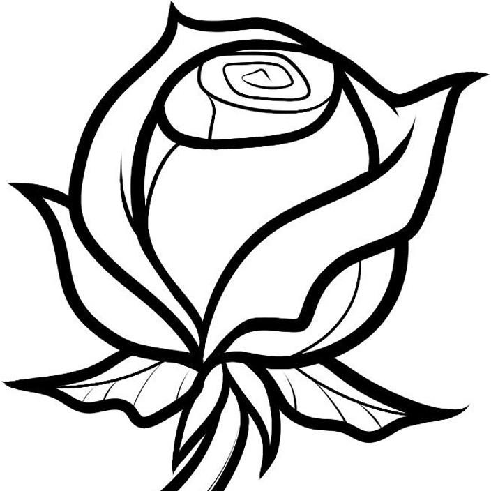 Картинка розы для срисовки, день рождения фото