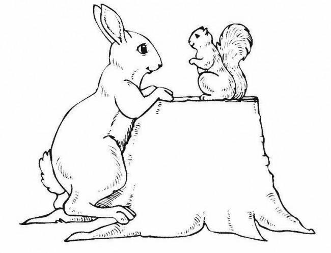 Зайчик и белочка картинка