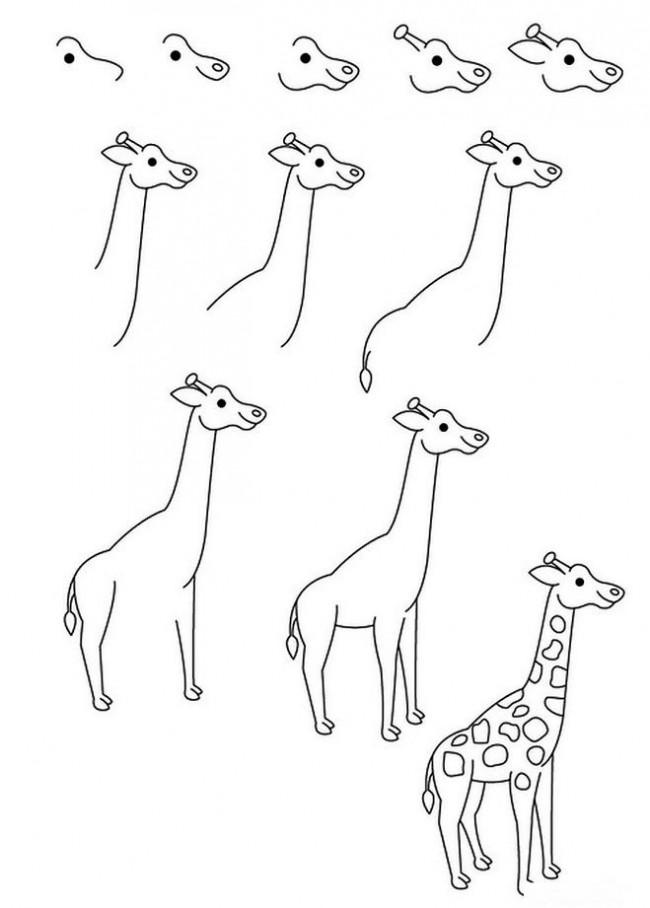 картинки жираф поэтапно могу сказать, что