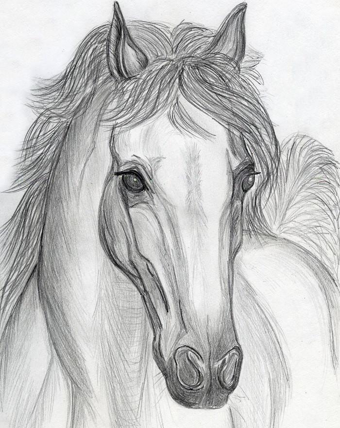 Картинки для срисовки сложные простым карандашом