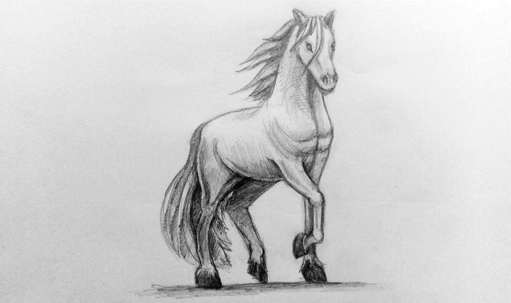 Картинки карандашом коня