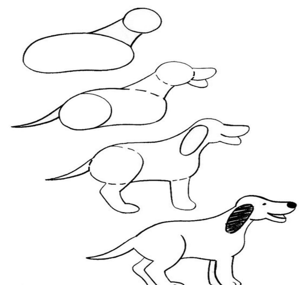Пошаговые рисунки породистых собак