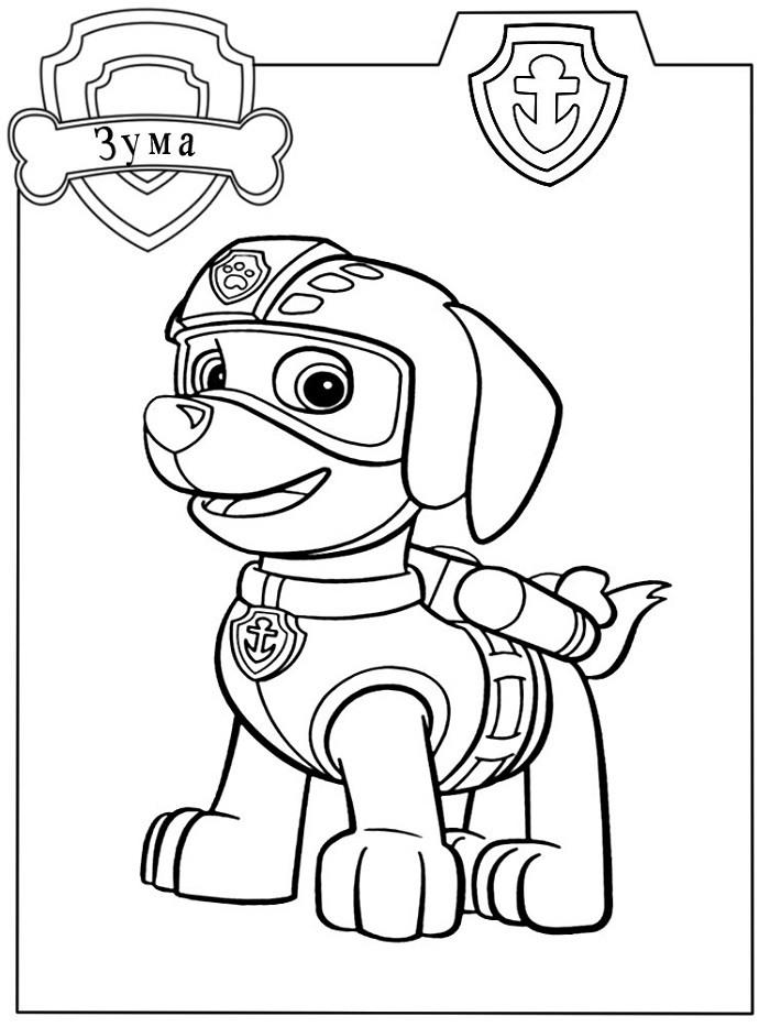 увлекался картинки щенячьего патруля карандашом компания