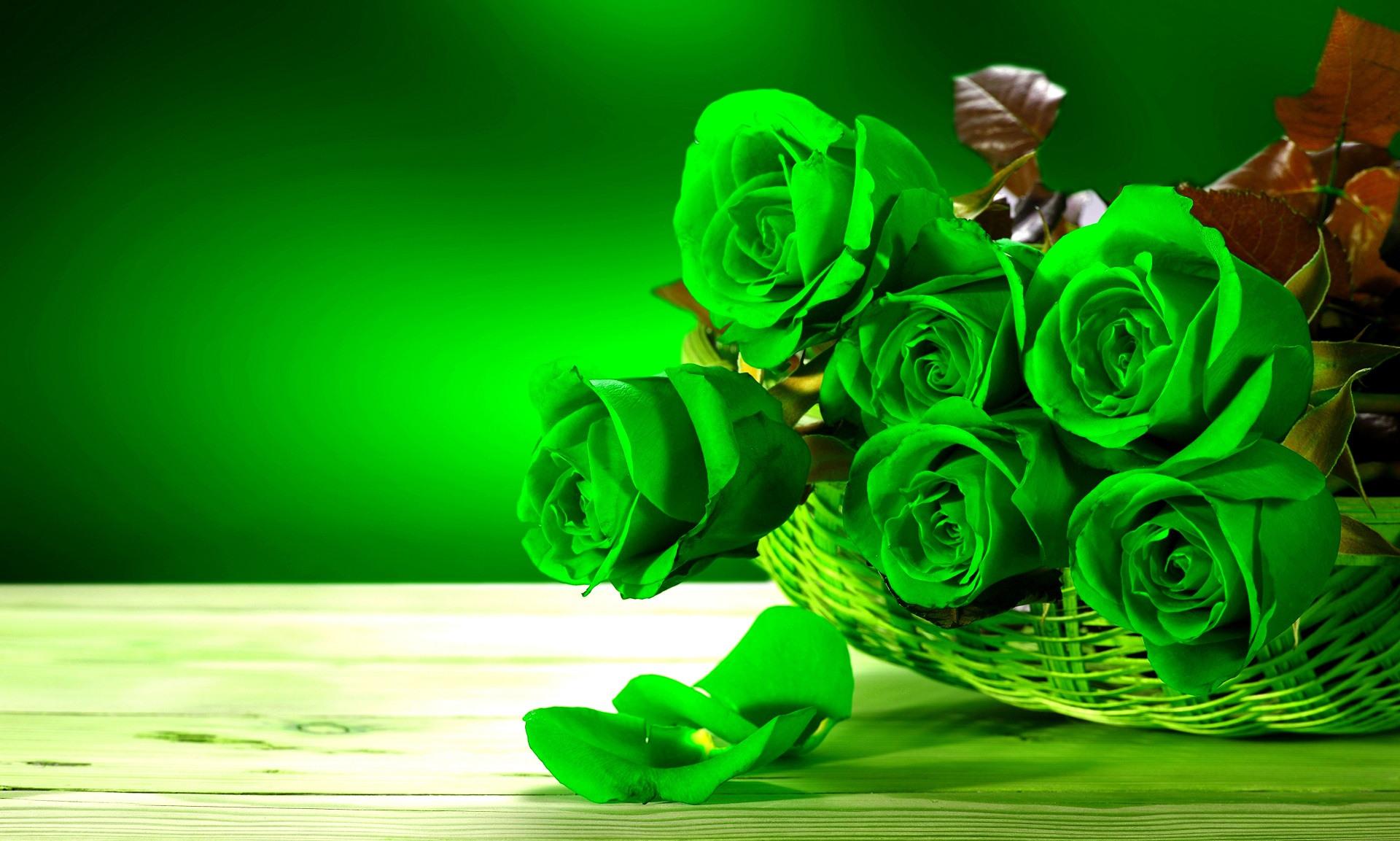 Салатовые красивые картинки