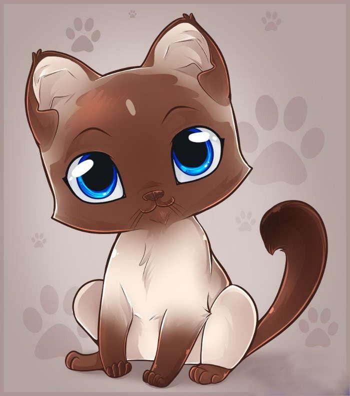 картинки милых котят с милыми глазками поэтапно сегодняшнее время