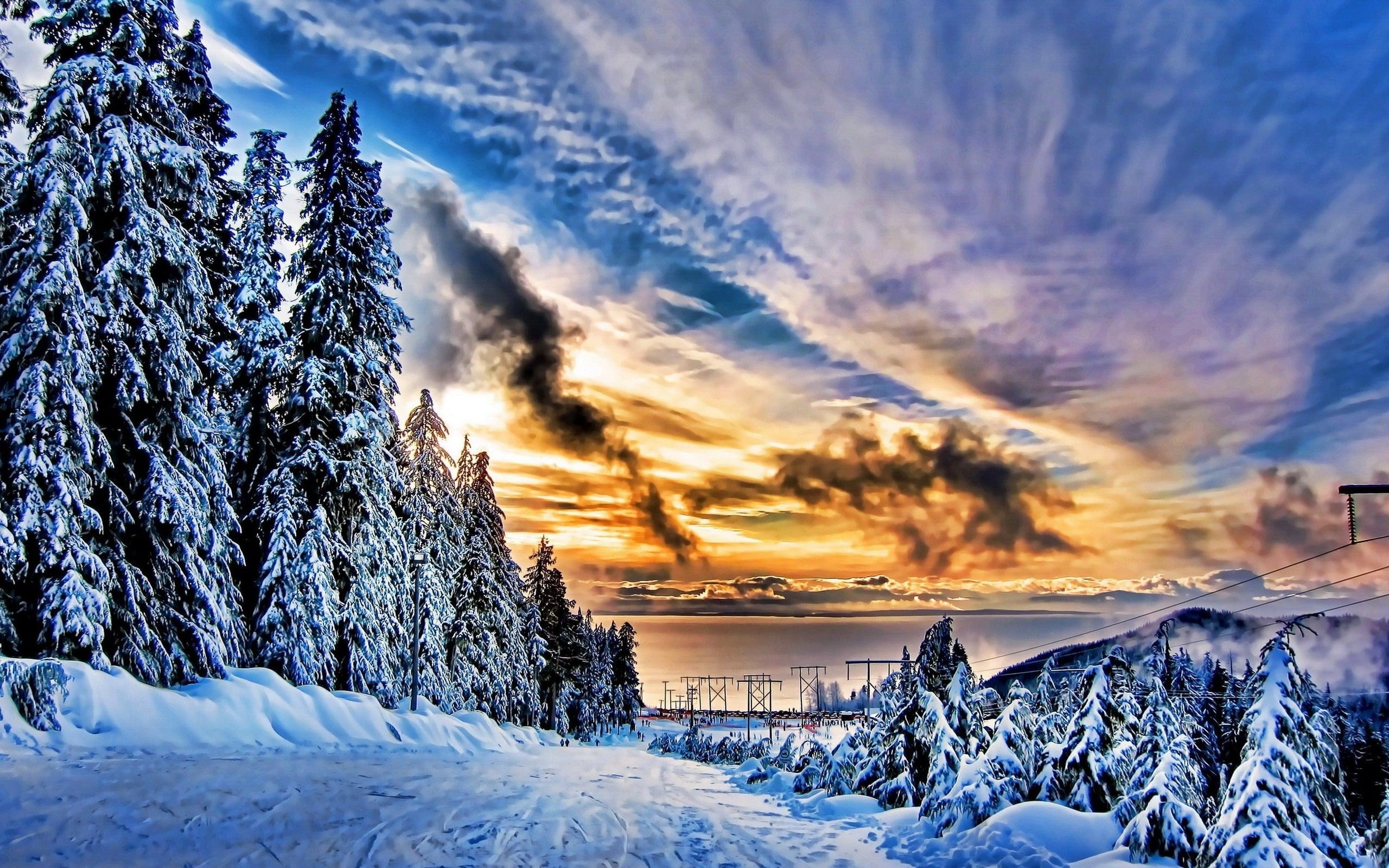 Зимний пейзаж картинки на экран телефона