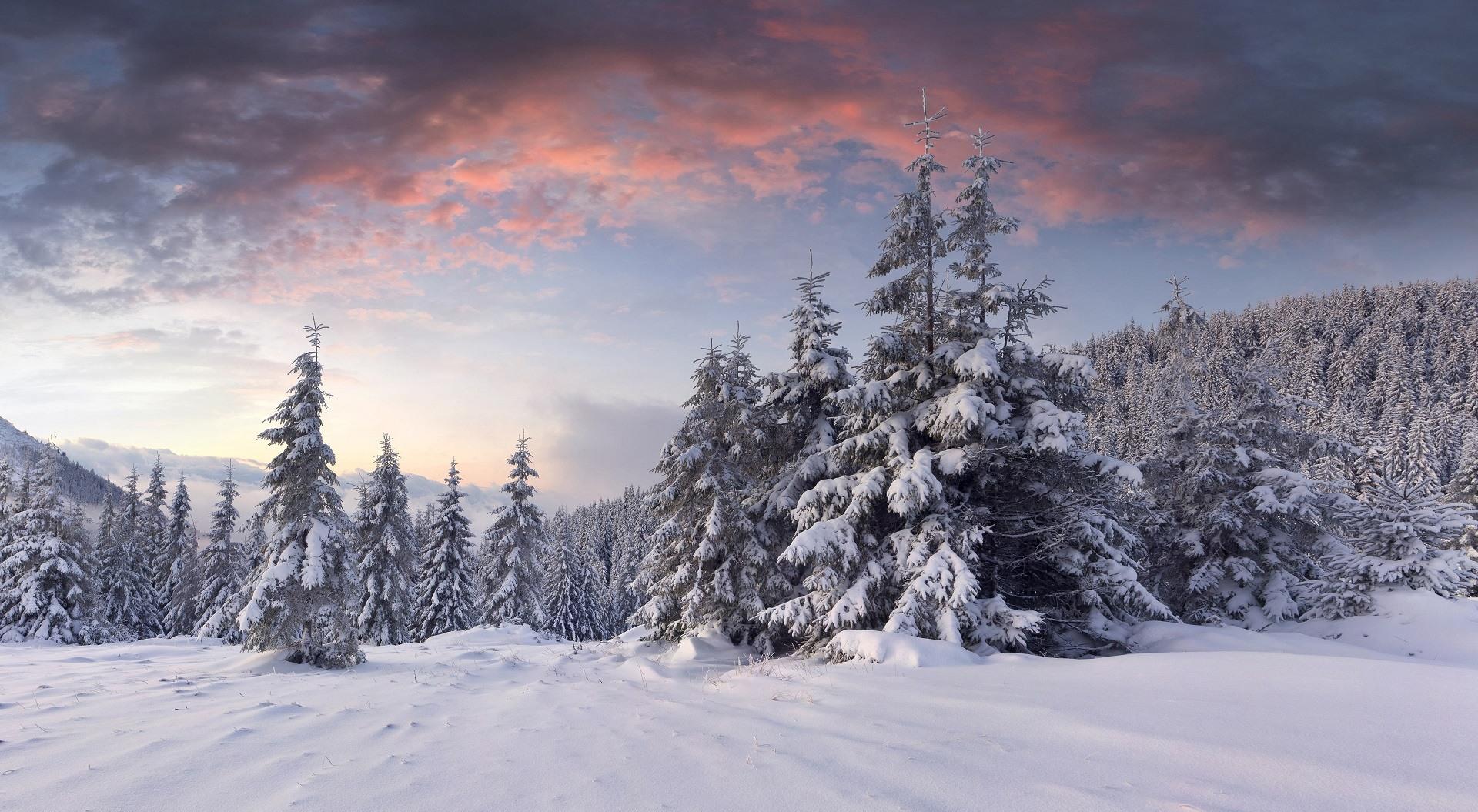 картинки зима в высоком качестве на русском