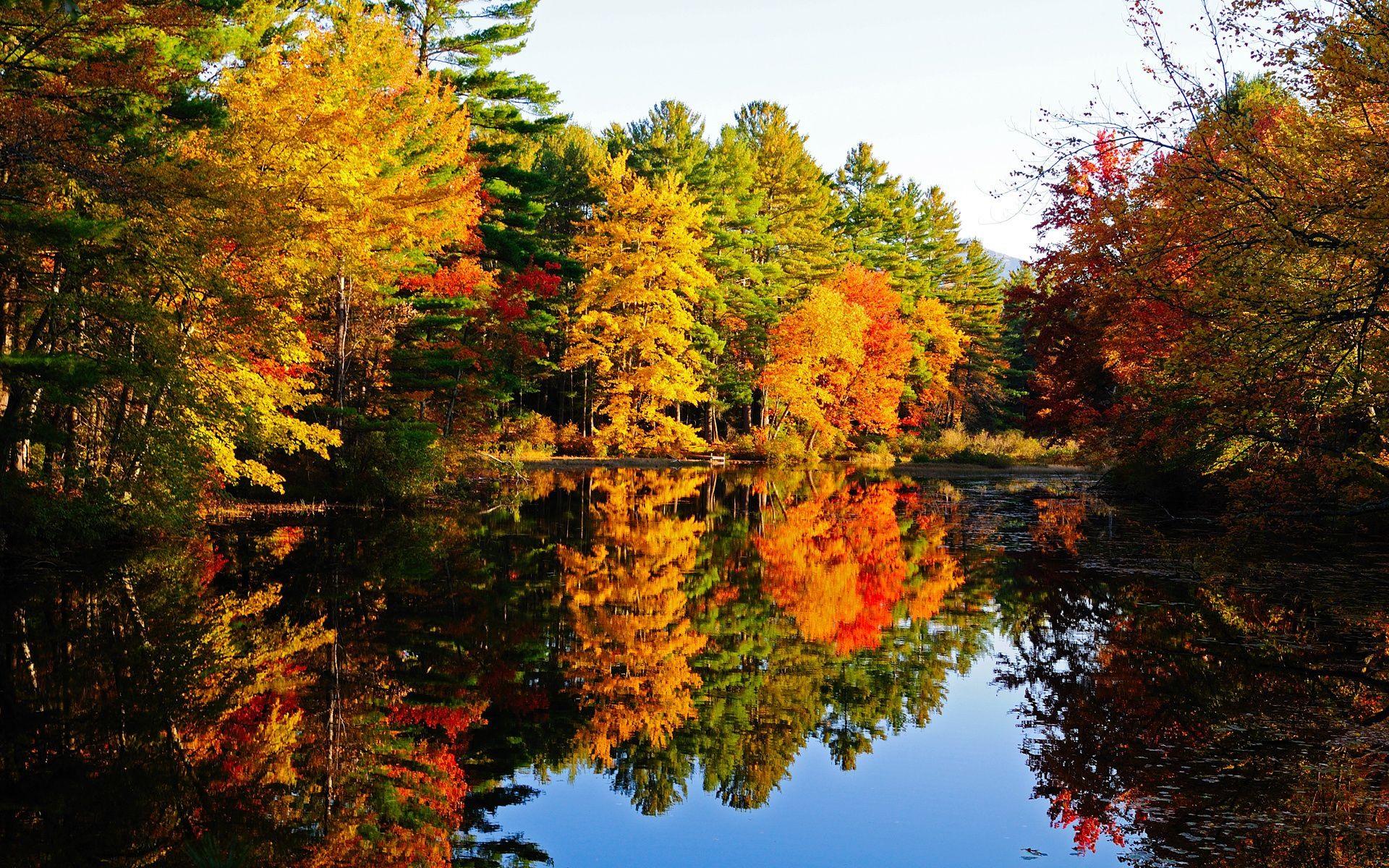 Картинки осень на рабочий стол (50 фото) • Прикольные ...
